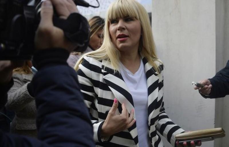 Ce va face Elena Udrea imediat ce va fi eliberată din Costa Rica. Avocatul fostului ministru a făcut anunţul