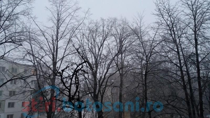 Cod galben de ceaţă în judeţul Botoşani