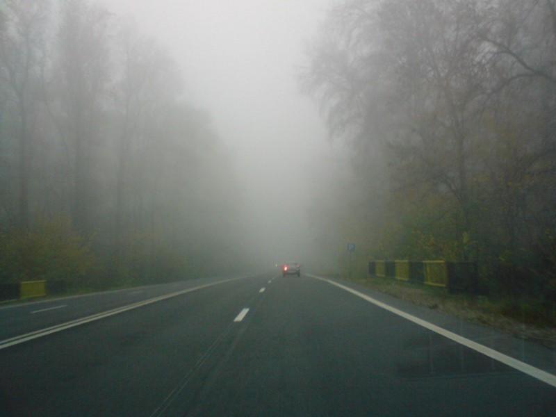 Cod galben de ceață pentru județul Botoșani!
