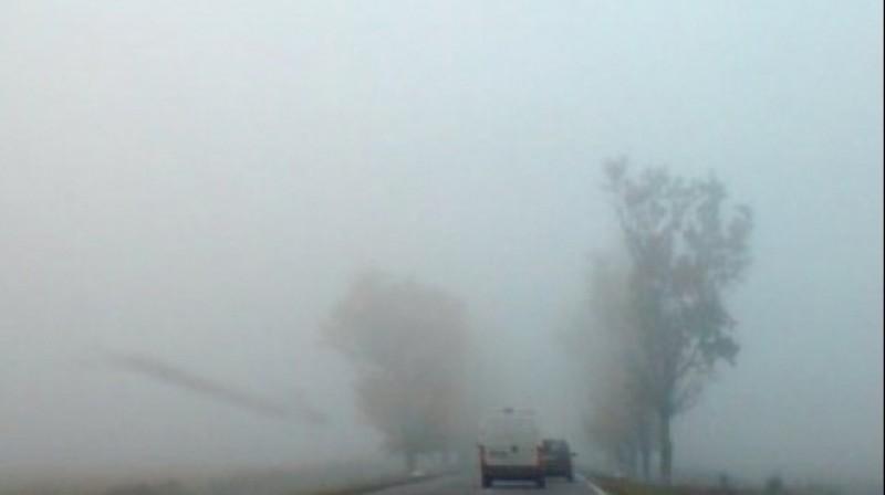 Cod Galben de ceață pentru județul Botoșani până la ora 2.00!