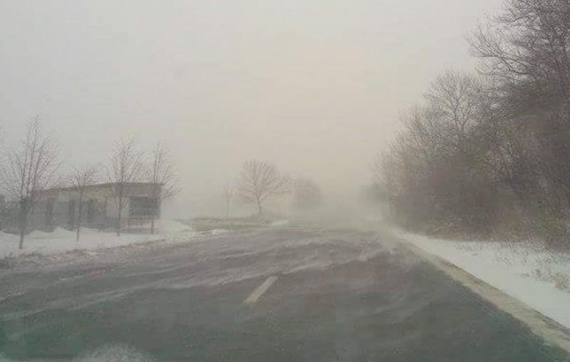 COD GALBEN de polei și precipitații în județul Botoșani!