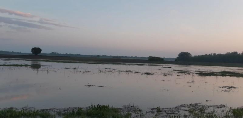 Cod Portocaliu de inundaţii valabil pe râul Prut!