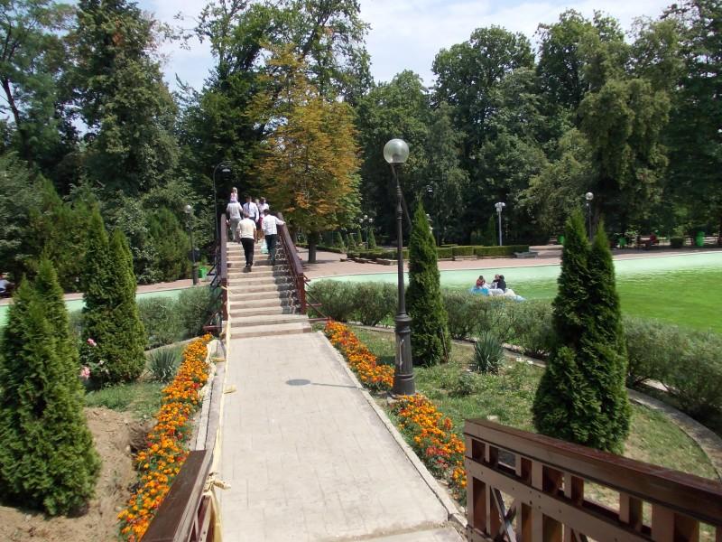 Comisarii Gărzii de Mediu Botoșani au verificat respectarea legislației de mediu din domeniul spațiilor verzi