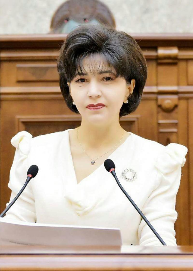 """COMUNICAT - Doina Federovici: """"Legea achizițiilor strategice poate avantaja modernizarea drumului Botoșani-Târgu Frumos"""""""