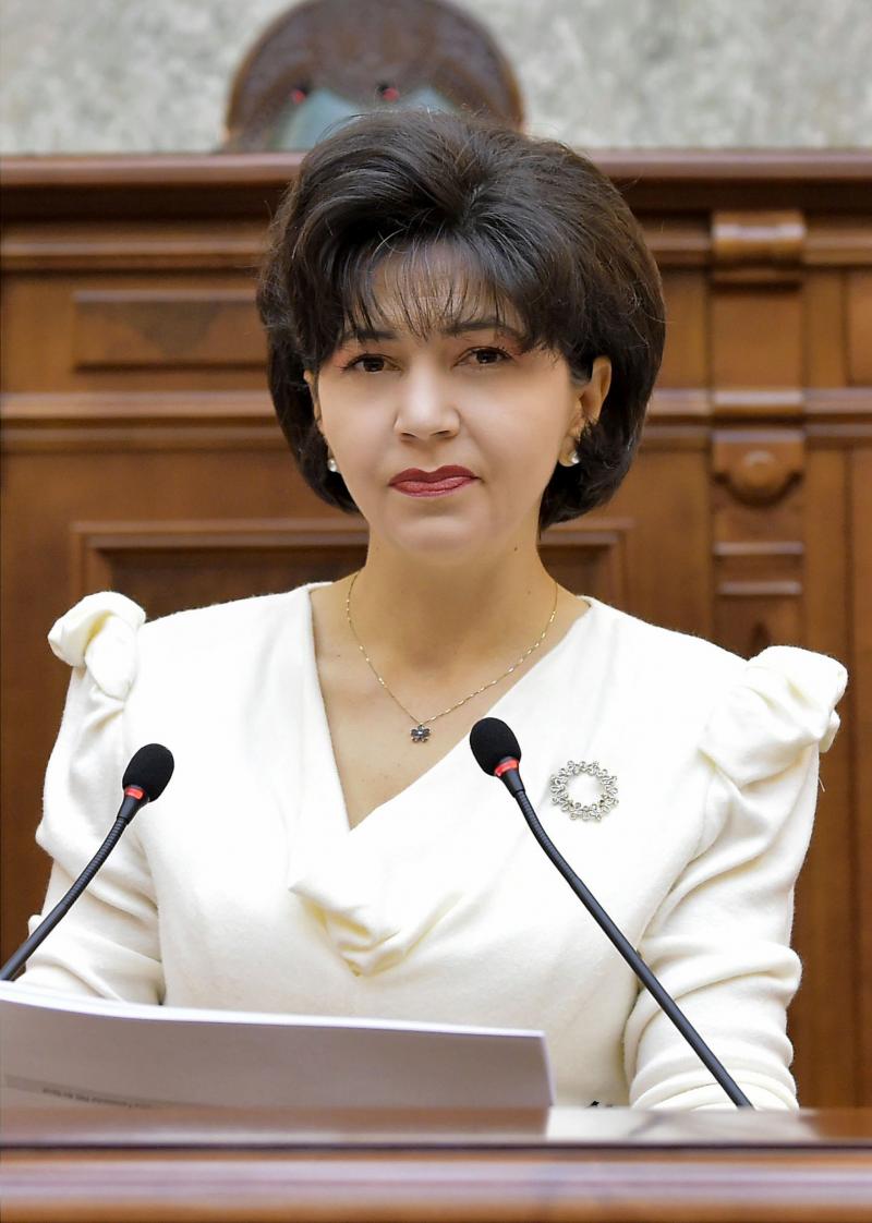 """COMUNICAT Doina Federovici: """"PSD este singurul partid care își asumă public analiza programului și echipei de guvernare"""""""