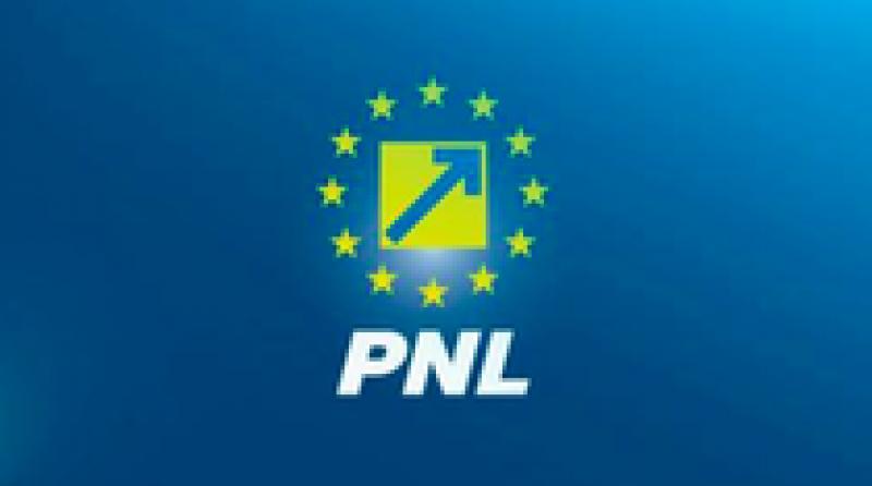 Congresul PNL, in care se va alege presedintele partidului, va avea loc pe 17 iunie