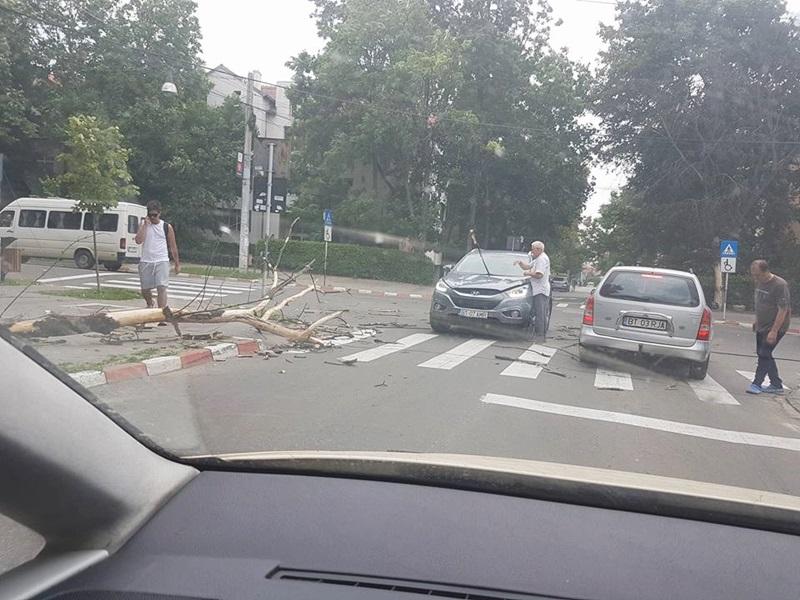Copac căzut peste o maşină aflată în mers! FOTO