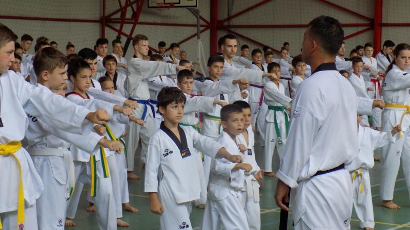CS Real Taekwondo a reprezentat cu succes judeţul Botoşani la cea de a XII-a editie a Stagiului Tehnic Naţional la Taekwondo W.T.F.