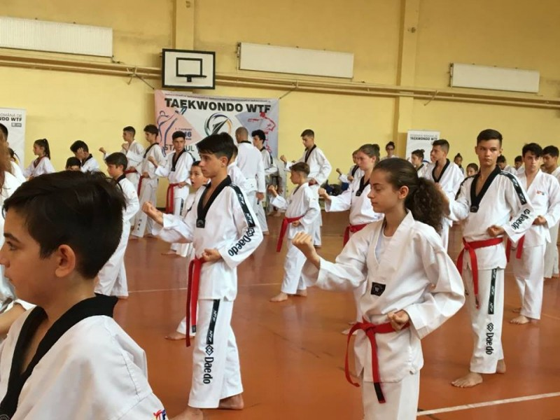 "CS Real Taekwondo la a XIII-a editie a ""STAGIULUI TEHNIC NATIONAL"" - FOTO"