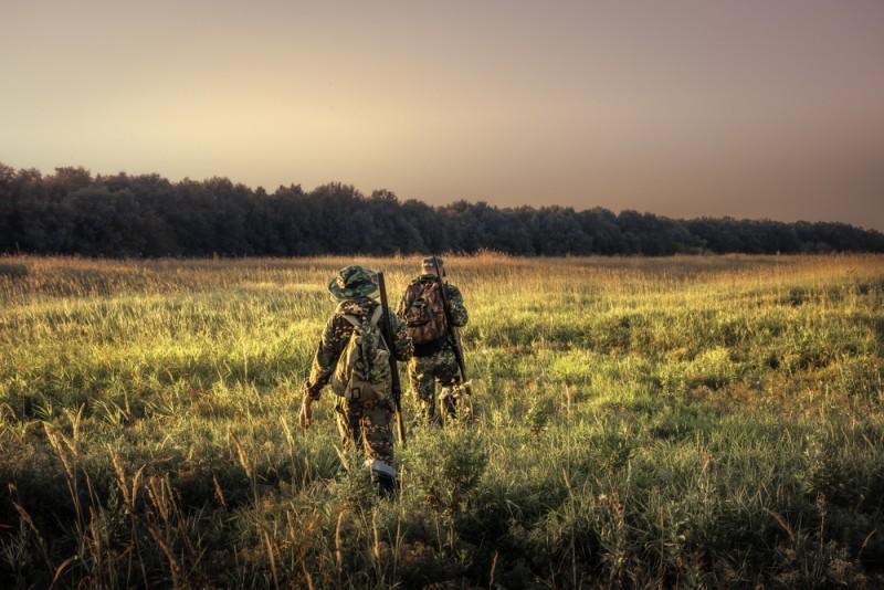 Cum alegi echipamente Night Vision şi lunete pentru vânătoare?