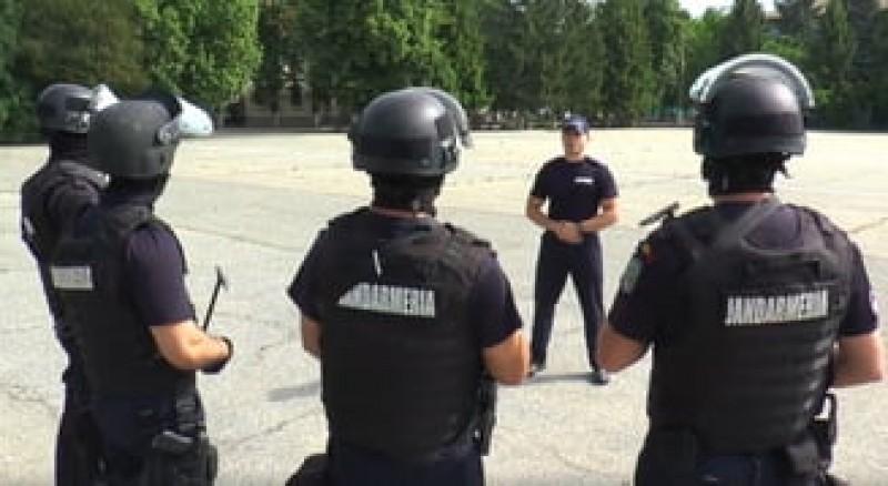 Cum fac jandarmii haz de cireșele cu valoare inestimabilă - VIDEO