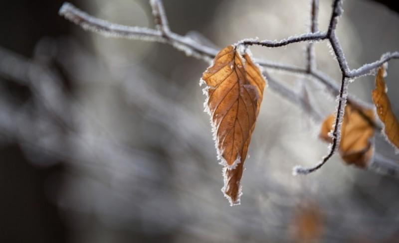 Cum va fi vremea în următoarele două săptămâni: Temperaturi mai ridicate decât în mod normal, ploaie și lapoviță