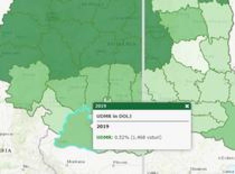 Curiosul caz al rezultatelor UDMR la alegeri: În Botoșani sunt 18 maghiari înregistrați oficial, dar UDMR a obținut 926 de voturi