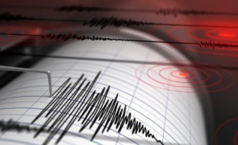 Cutremur cu magnitudinea 3,2 pe scara Richter în judeţul Vrancea, miercuri dimineaţa