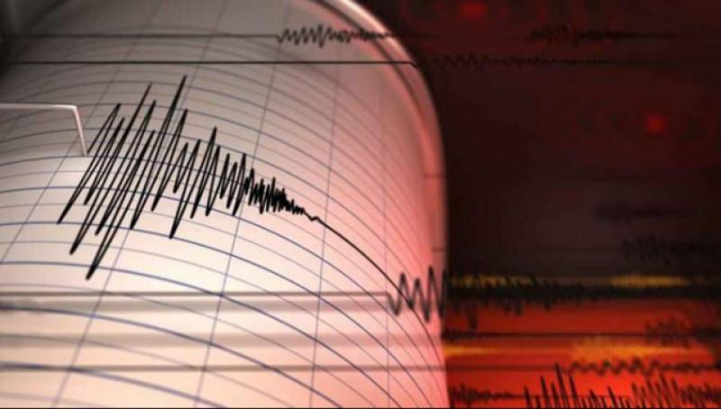 Cutremur cu magnitudinea 3,7 în Vrancea, la 7 minute după terminarea procesului de votare