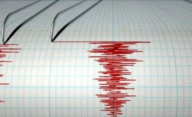 Cutremur cu magnitudinea de 3,7 grade noaptea trecută în Vrancea