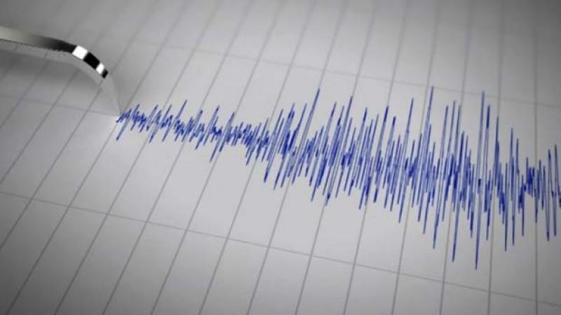 Cutremur cu magnitudinea de 4,1 pe scara Richter în Vrancea!