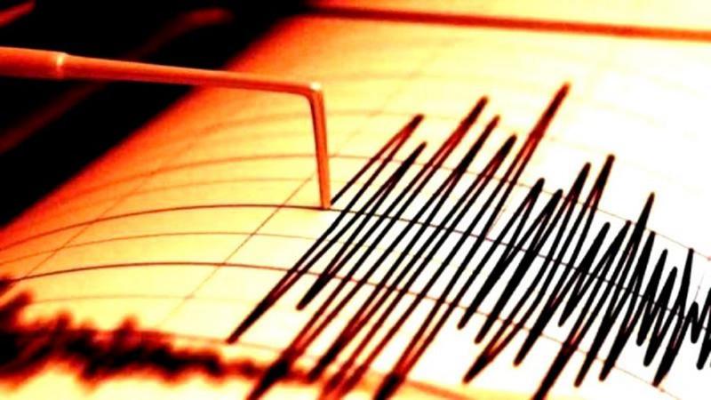 Cutremur de 3,9 grade pe scara Richter în această dimineață în zona Vrancea