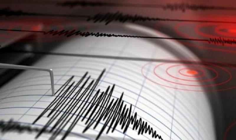 Cutremur de 4 grade pe scara Richter, miercuri dimineața, în România