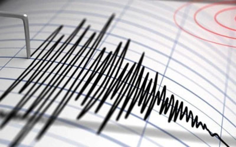 Cutremur de 4,5 grade în zona Vrancea