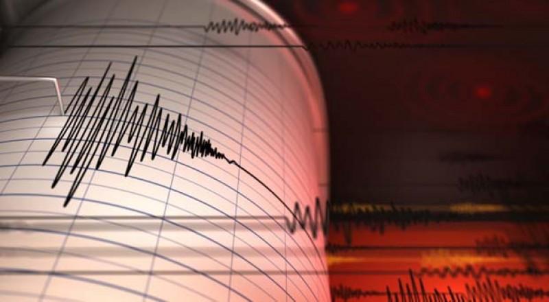 Cutremur de 4.5 pe scara Richter în România