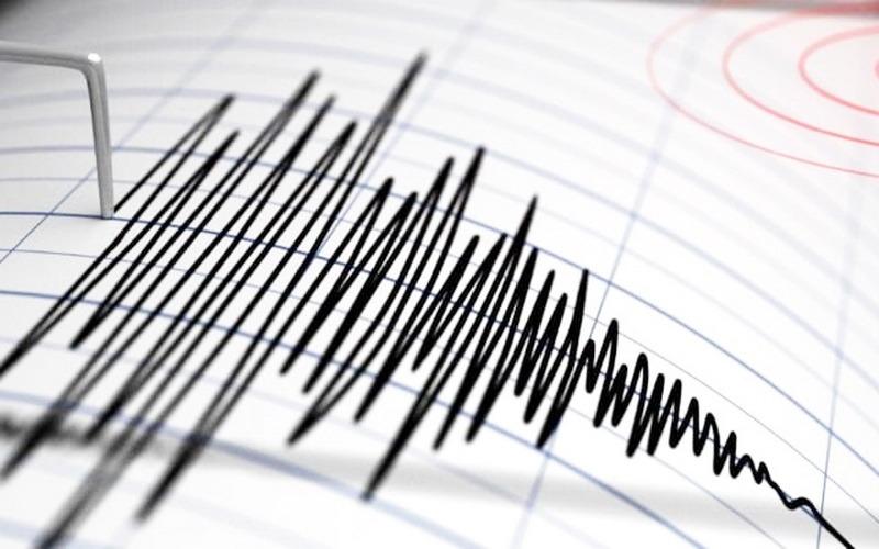 În urmă cu puțin timp: cutremur de 4,8 grade în zona seismică Vrancea