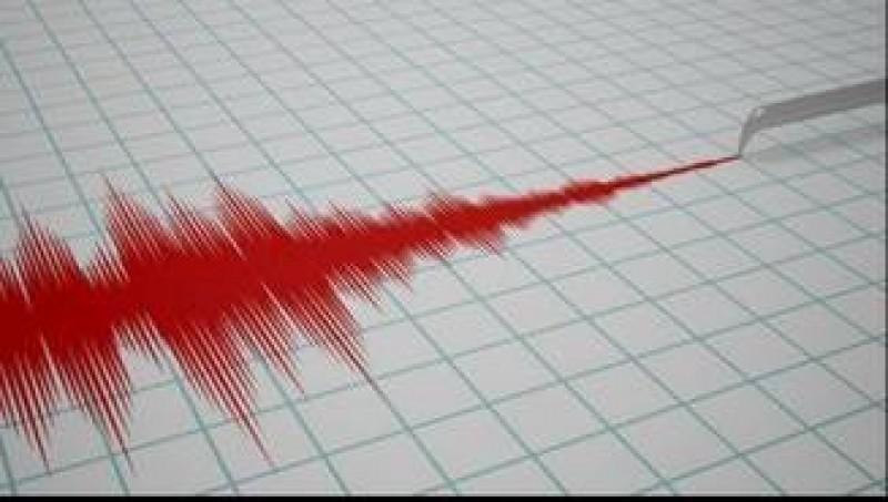 Cutremur de 5 pe scara Richter, în zona Vrancea!