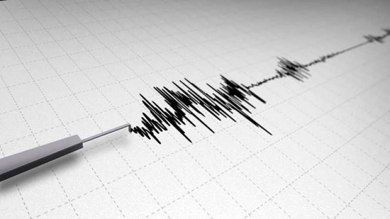 Cutremur de intensitate I astăzi la amiază în Vrancea. A avut 3,5 grade