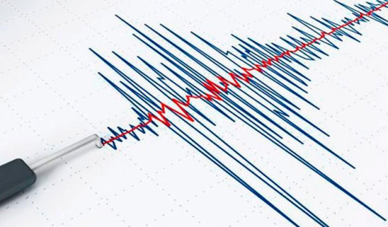 Cutremur în această dimineață în zona Vrancea