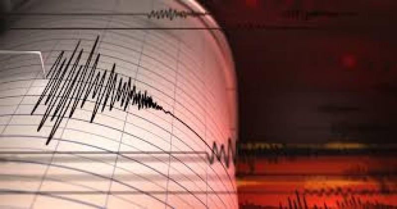 Cutremur în Vrancea - Ce magnitudine a avut seismul