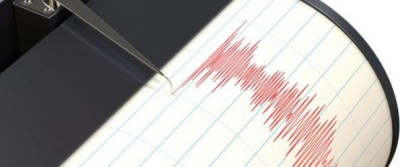 Cutremur în Vrancea, în noaptea de vineri spre sâmbătă