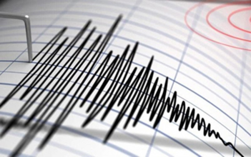 Cutremur în zona Vrancea - Ce magnitudine a avut seismul înregistrat duminică