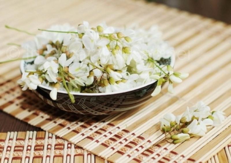DE FOLOS: Indicațiile terapeutice ale preparatelor din flori de salcâm