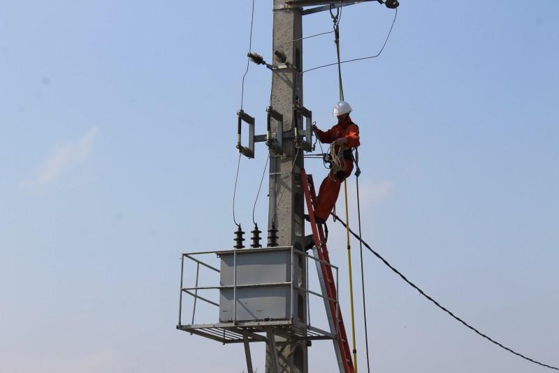 Delgaz Grid: Alimentarea cu energie electrică, reluată în zonele afectate de vântul puternic!