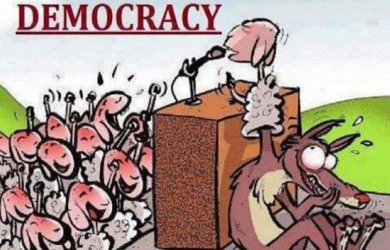 Democrația fictivă