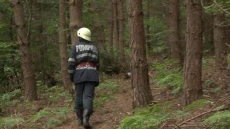 Desfășurare de forțe pentru găsirea unui botoșănean rătăcit în pădure la cules de ciuperci!