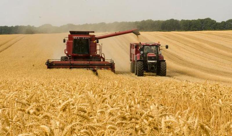 """Din GRÂNARUL Europei s-a ales praful și pulberea: România are cele mai mici suprafaţe de teren alocate agriculturii """"ecologice"""" din Europa! 97% din mâncarea noastă zilnică este asigurată de chimicale!"""