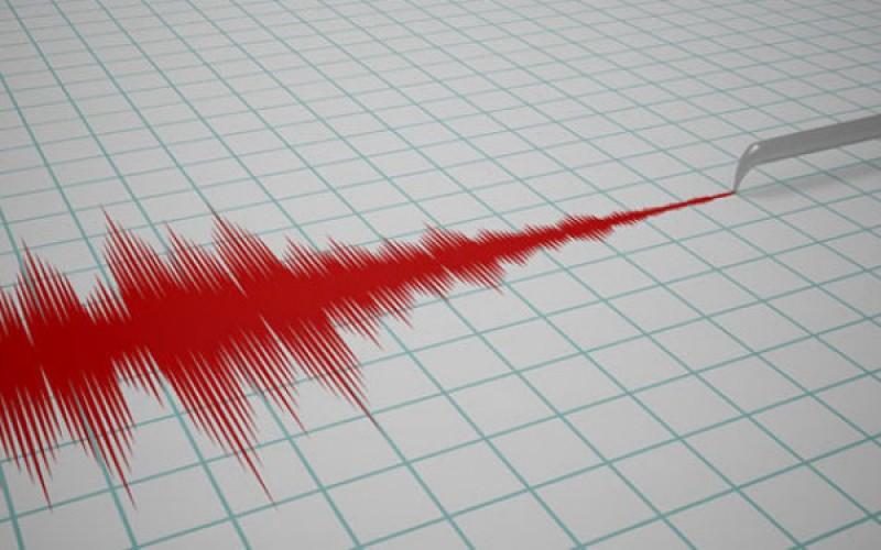 Directorul INFP: Acest cutremur a avut un mecanism destul de ciudat