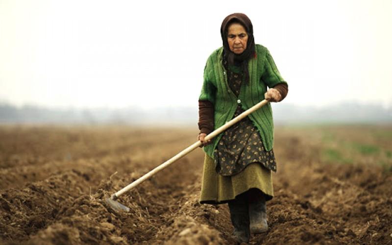Dispare agricultura de subzistență: Tinerii nu mai vor să audă de agricultură, iar aproape jumătate dintre agricultorii din țara noastră au între 50 și 100 de ani
