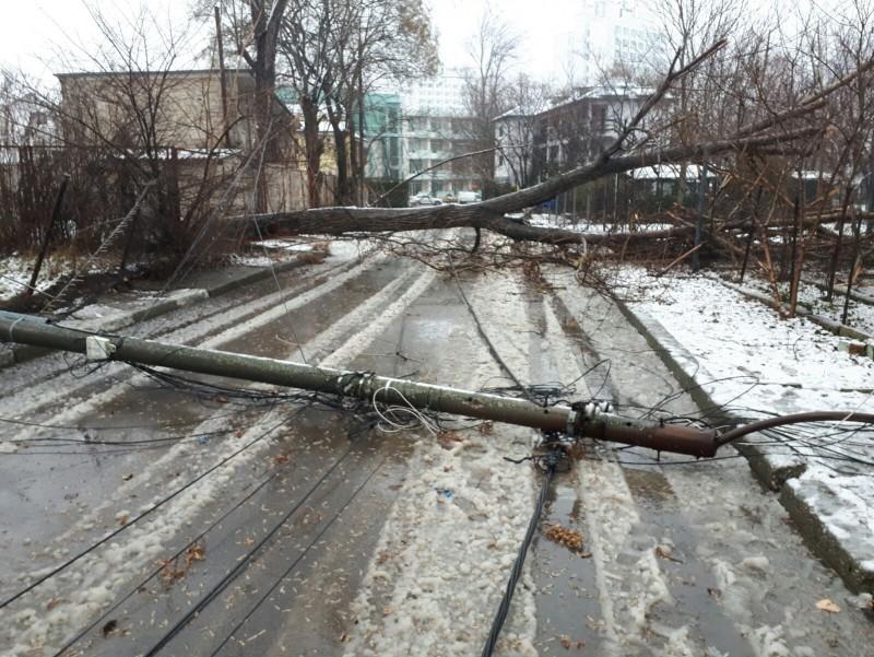 Dispeceratul de urgenţă al Delgaz Grid: Cum poți sesiza deranjamentele în alimentarea cu electricitate sau alte situaţii cu potenţial pericol!