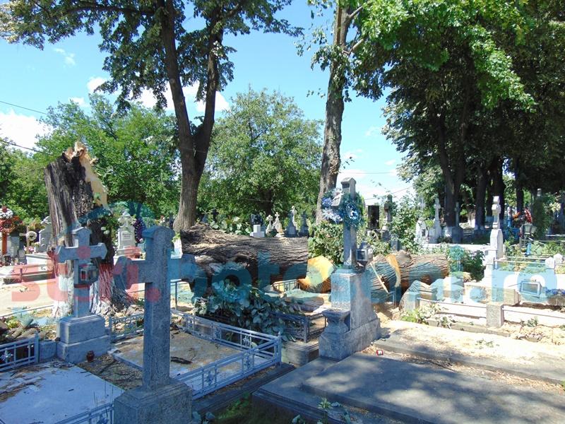 Monumente funerare distruse în Cimitirul Pacea! FOTO