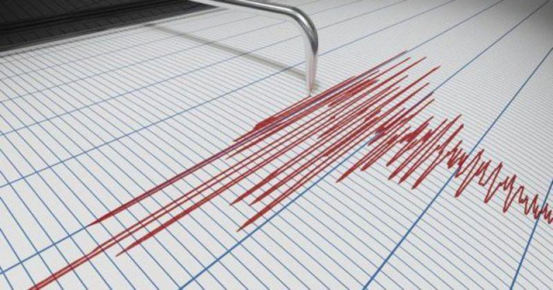 Două cutremure în această dimineață în zona seismică Vrancea