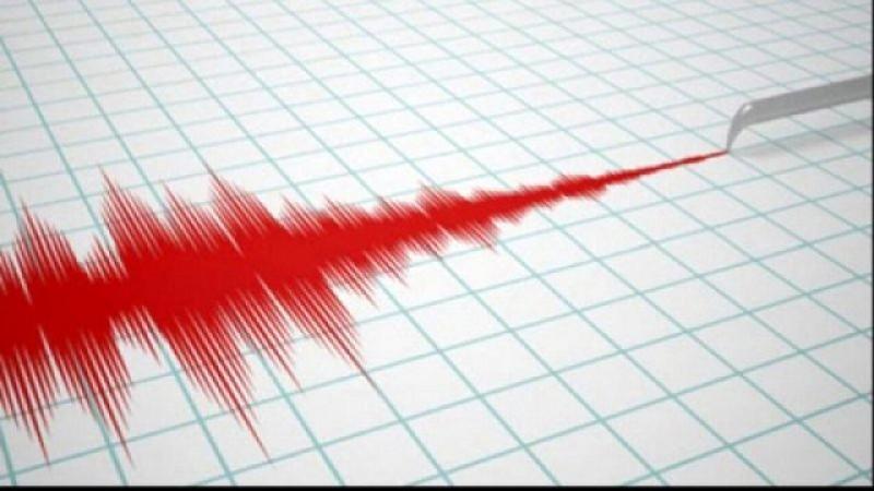 Două cutremure în această dimineața în zona Vrancea