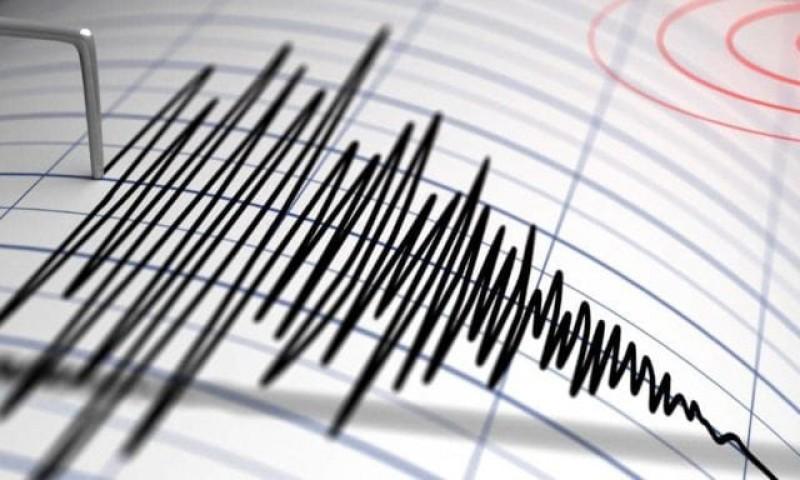 Două cutremure în această noapte în România