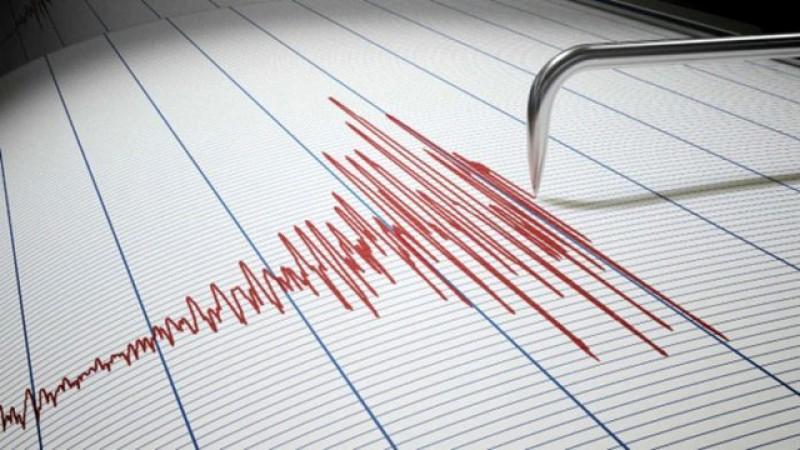 Două cutremure noaptea trecută în România, zona Vrancea