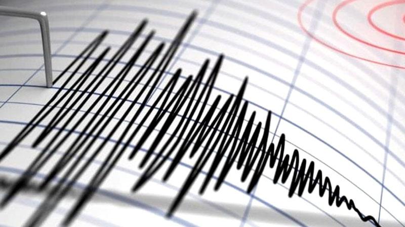 Două noi cutremure au avut loc noaptea trecută în zona Vrancea
