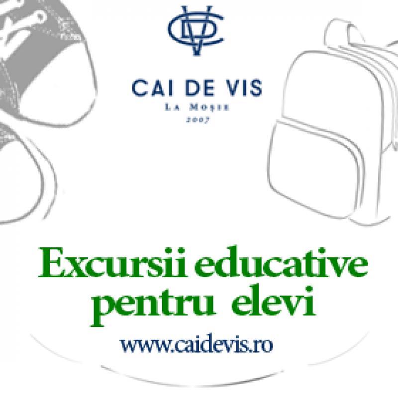 Educație și distracție în excursiile pentru elevi