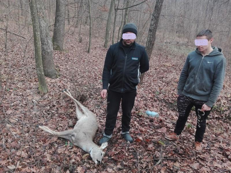 Ei se jură că nu fură... dar jandarmii i-au prins cu un căprior mort în pădure!