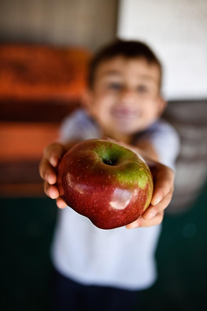 Elevii botoşăneni nu vor primi prea curând mere. Vezi motivul!