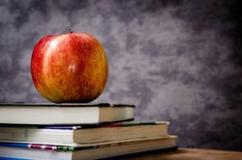 Elevii care au absolvit primul an de studiu al fiecarui ciclu scolar ar putea primi 50 de euro pentru carti!